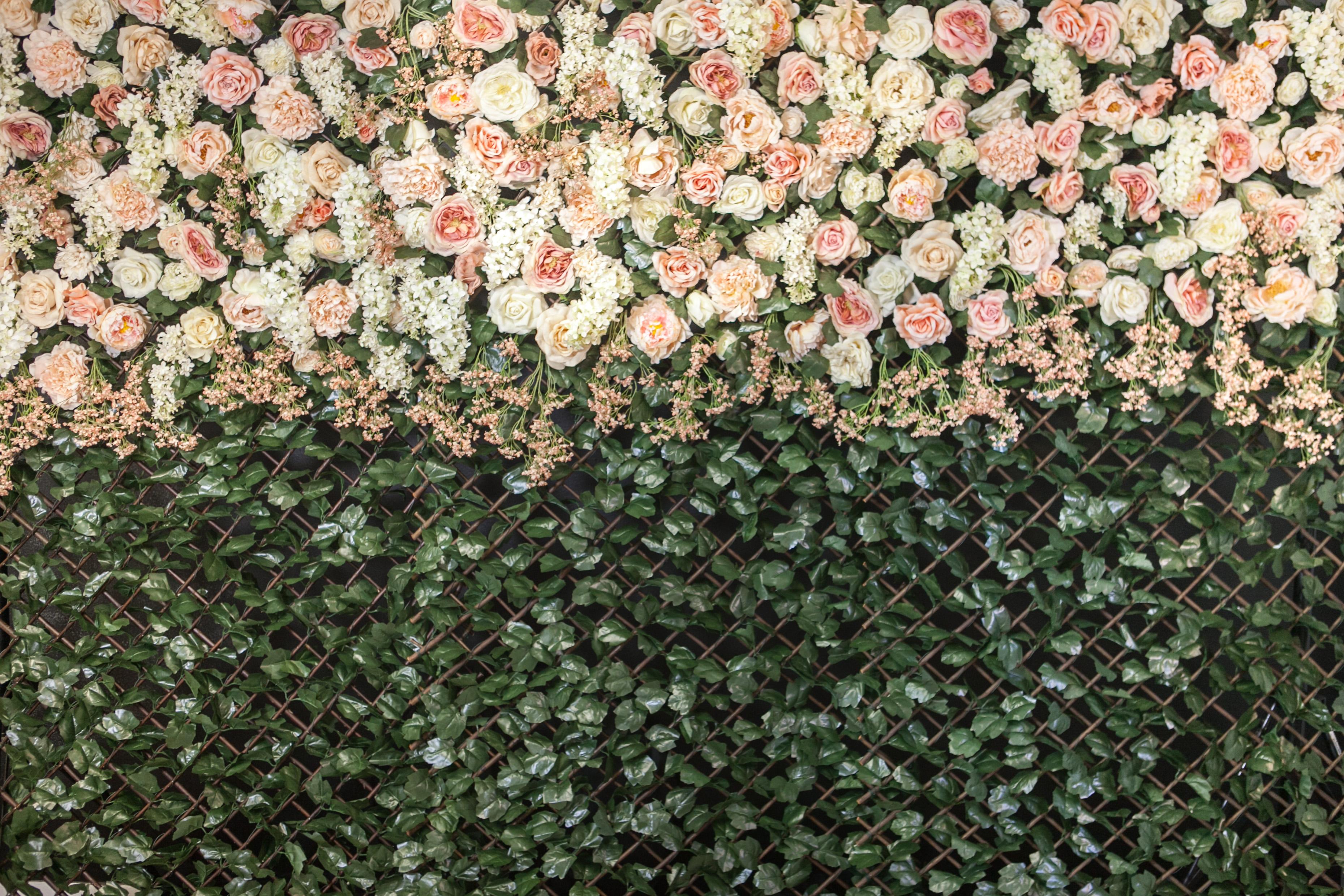 Philadelphia flowerwall